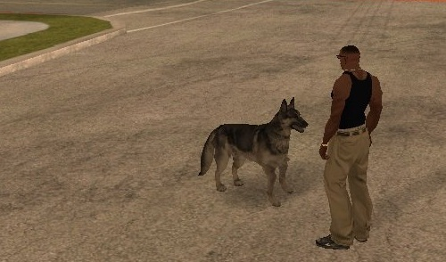 Коды на GTA San Andreas на собаку (+МОД)